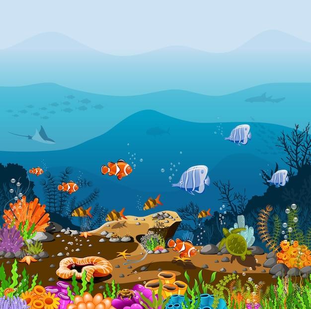 Prachtige oceaandieptes