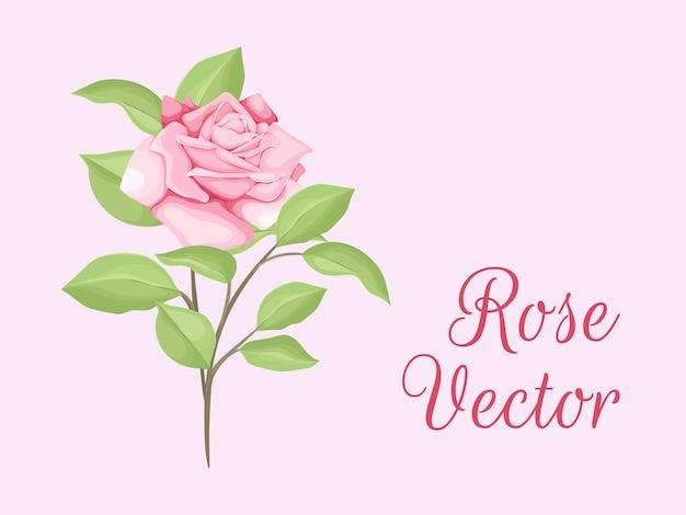 Prachtige roos en bladeren vector sjabloon