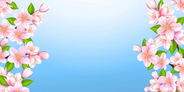 Prachtige takken van sakura