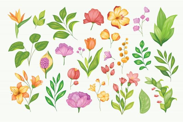 Prachtige vintage hand getekende bloemencollectie