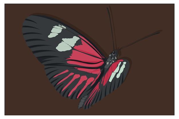 Prachtige vlinderillustratie in zwart, rood en wit