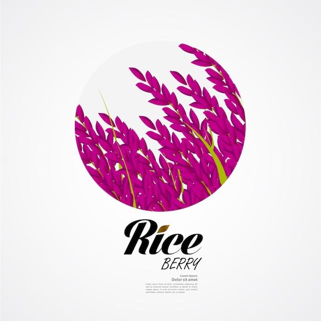Premium rice ontwerpconcept van hoge kwaliteit