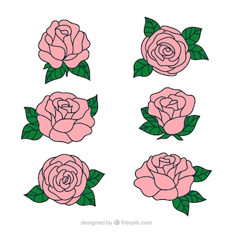 Pretty hand drawn roses