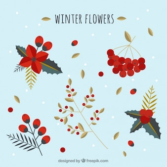 Pretty winter bloemen in plat design