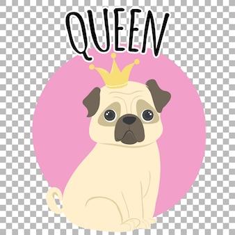 Pug koningin