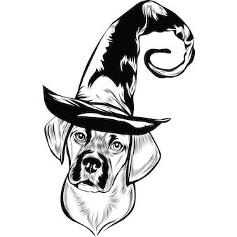 Puggle hond met heksenhoed voor halloween
