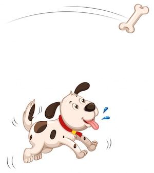 Puppy dat geïsoleerd stuk van been vangt