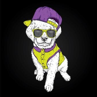 Puppy in een pet en shirt. illustratie voor een ansichtkaart of een poster, print voor kleding.