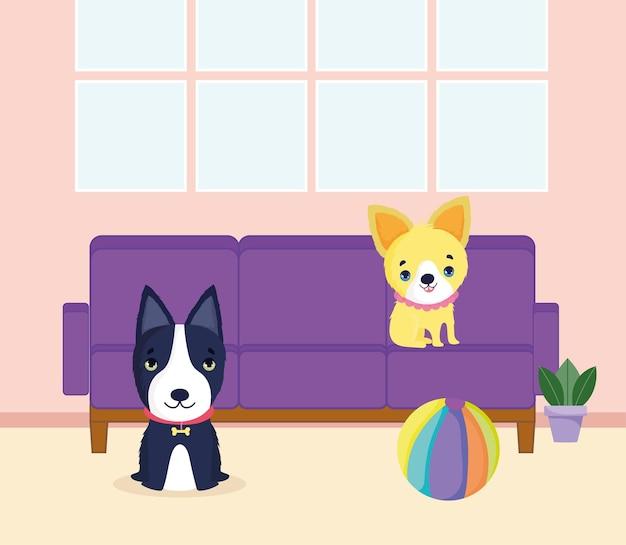 Puppy's in huis