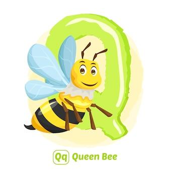 Q voor bijenkoningin. premium illustratie tekenstijl van alfabet dier voor onderwijs