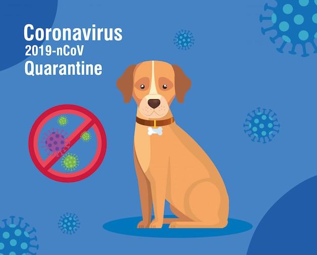 Quarantaine 2019-ncov-campagne met hond
