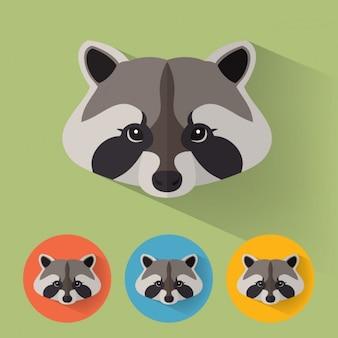 Raccoon ontwerpt collectie