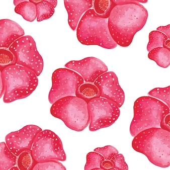 Raflesia bloem aquarel