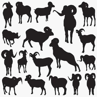 Ram dierlijke silhouetten