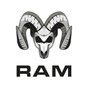 Ram schedel
