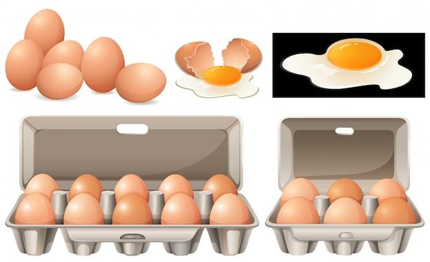 Rauwe eieren in verschillende pakketten