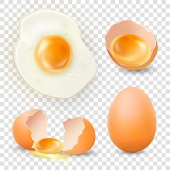 Realistisch gebakken ei gebroken vers en heel bruin kippenei