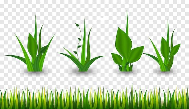 Realistisch groen gras. 3d verse lente planten. verschillende kruiden en struiken.
