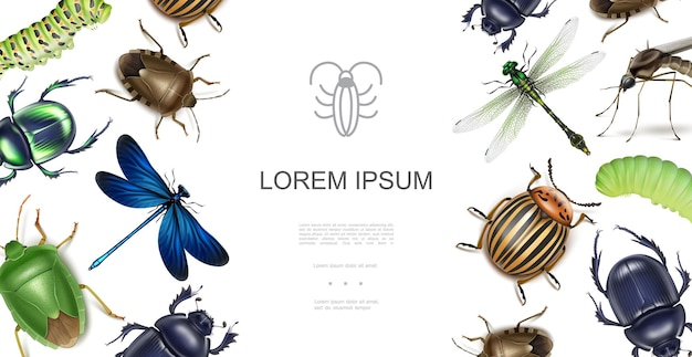 Realistisch insectenconcept met libellen, scarabee, colorado, aardappelkever, stinkende insecten, muggen, rupsen