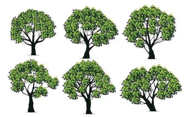 Realistisch ontwerp van de boom instellen