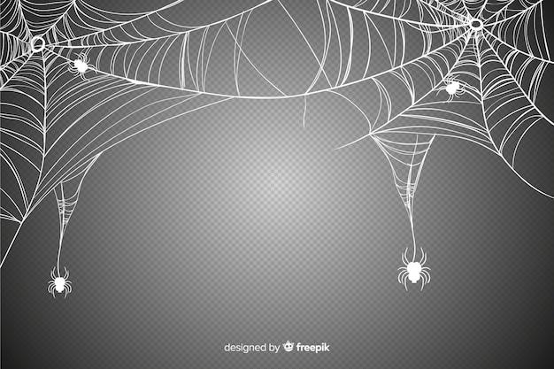 Realistisch spinneweb voor halloween-evenement