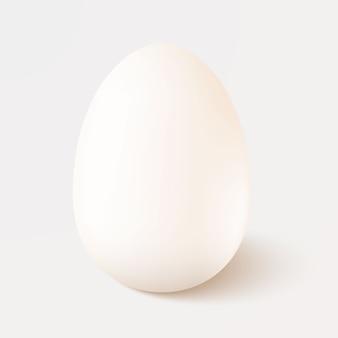 Realistisch wit enig kippenei dat op witte achtergrond wordt geïsoleerd. sjabloon.