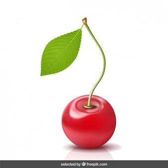 Realistische 3d-cherry
