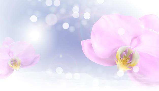 Realistische 3d orchideebloem achtergrond.