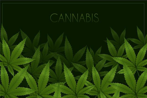 Realistische cannabis blad achtergrond