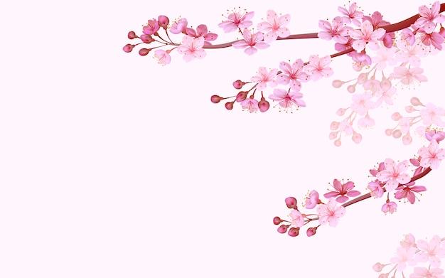 Realistische chinese roze sakura achtergrond op zachte roze achtergrond. oosterse patroon bloem bloesem lente achtergrond. 3d natuur achtergrond illustratie