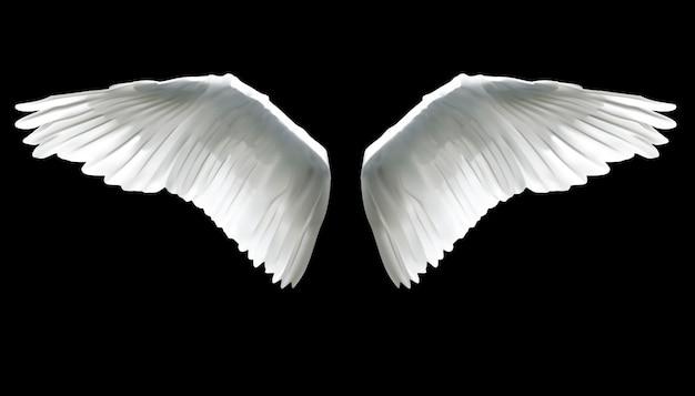 Realistische elegante witte engelenvleugels op zwarte achtergrond.