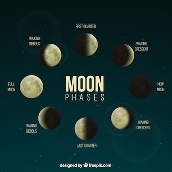 Realistische fasen van de maan