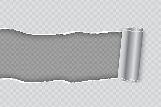 Realistische gescheurd papier met opgerolde rand op transparante achtergrond