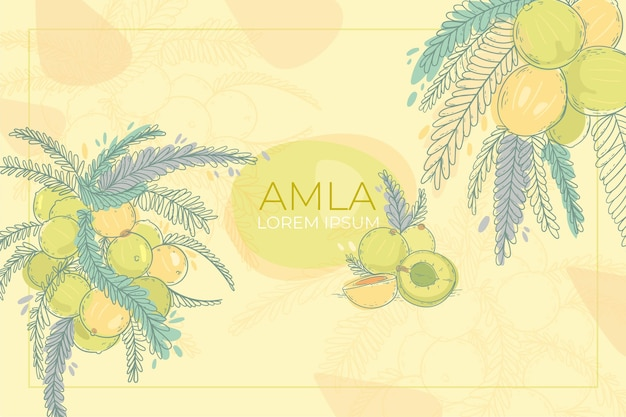 Realistische hand getekend amla fruit achtergrond Gratis Vector