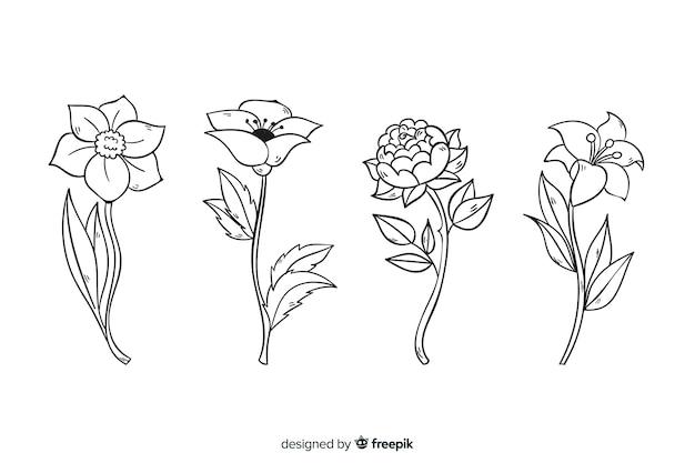Realistische hand getekend botanische bloemen collectie