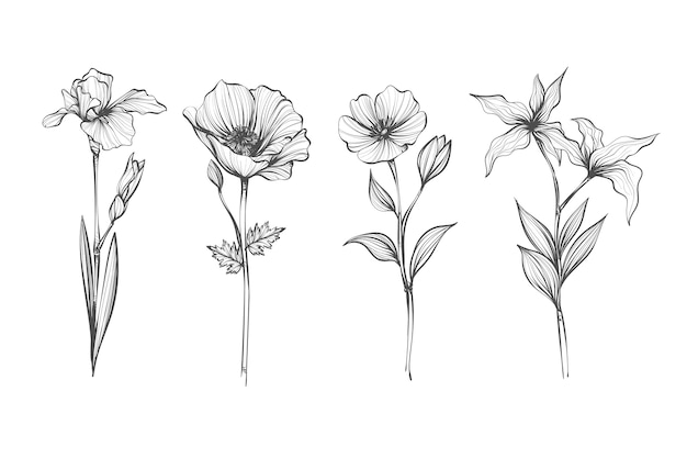 Realistische hand getekend vintage plantkunde bloem collectie