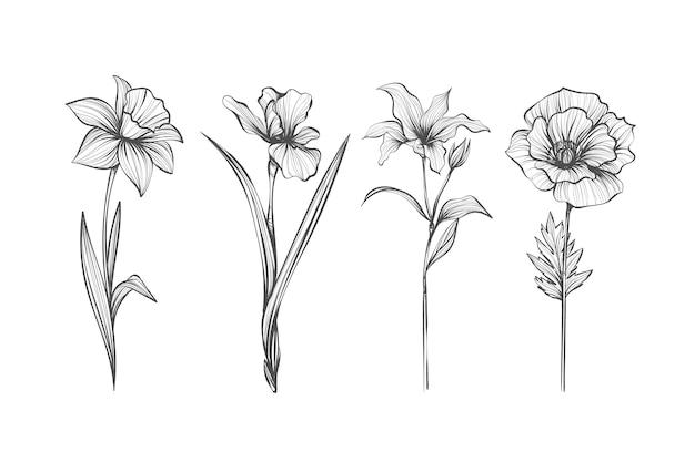 Realistische hand getekend vintage plantkunde bloem pack