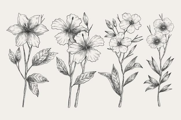 Realistische hand getekend vintage plantkunde bloem set