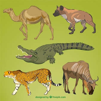 Realistische hand getekende wilde dieren