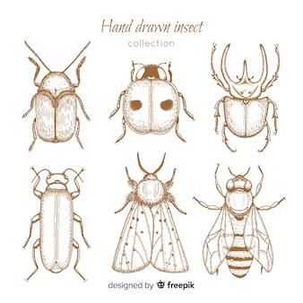 Realistische hand getrokken insecten schets set