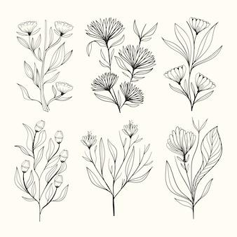 Realistische hand getrokken kruiden & wilde bloemen