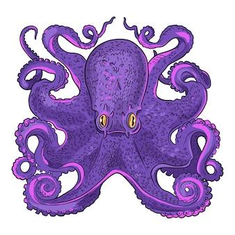 Realistische handgetekende octopus