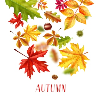 Realistische herfstbladeren vallen illustratie