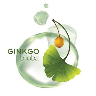 Realistische illustratie cosmetica met ingrediënten ginkgo biloba huidverzorging cosmetica
