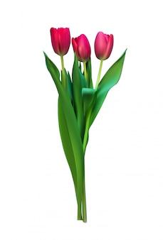 Realistische illustratie kleurrijke tulpen