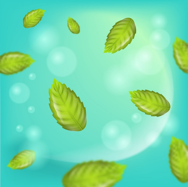 Realistische illustratie verse muntblaadjes vector