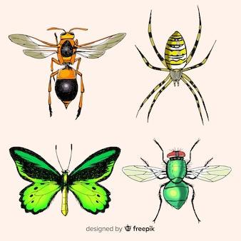Realistische insectencollectie