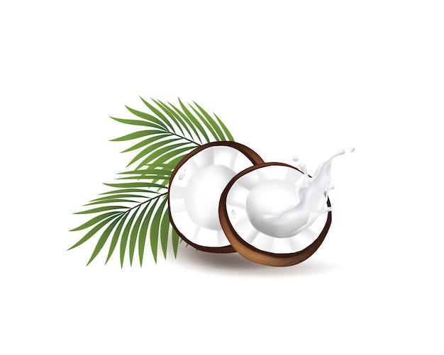 Realistische kokos biologische melk, olie en groene palmbladeren illustratie
