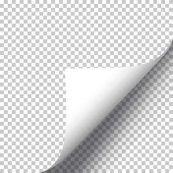 Realistische krullende pagina hoek illustratie
