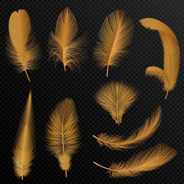 Realistische luxe gouden tribale veren ingesteld op zwarte transparante alpha-stijlachtergrond